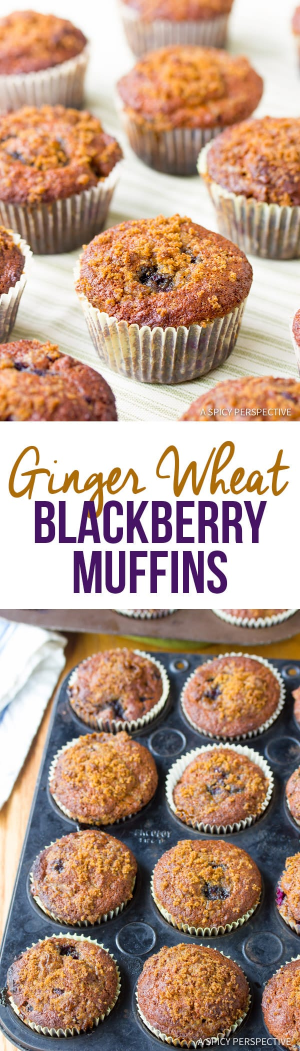 Sweet and Tangy Ginger Wheat Blackberry Muffins | ASpicyPerspective.com
