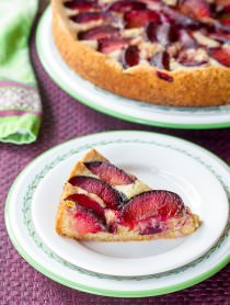 Rustic Fresh Plum Cake on ASpicyPerspective.com