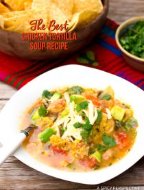 The Best Chicken Tortilla Soup Recipe on ASpicyPerspective.com