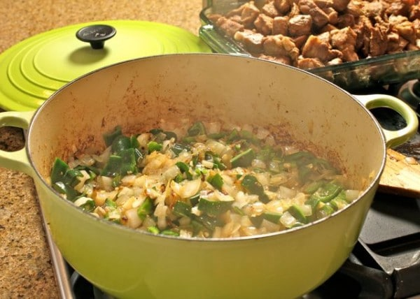 New Mexican Chile Verde - A Spicy Perspective