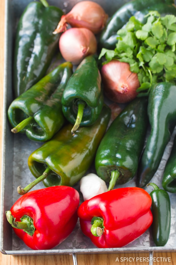 Making Stuffed Poblano Peppers with Red Pepper Puree Recipe