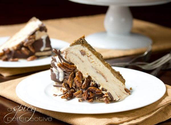 Turtle Pumpkin Ice Cream Cake - A Spicy Perspective