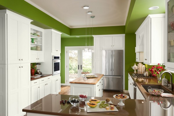 Sensational My Shenandoah Cabinetry Experience A Spicy Perspective Best Image Libraries Thycampuscom