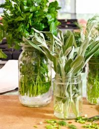 How to Keep Herbs Fresh #howto #herbs #cooking