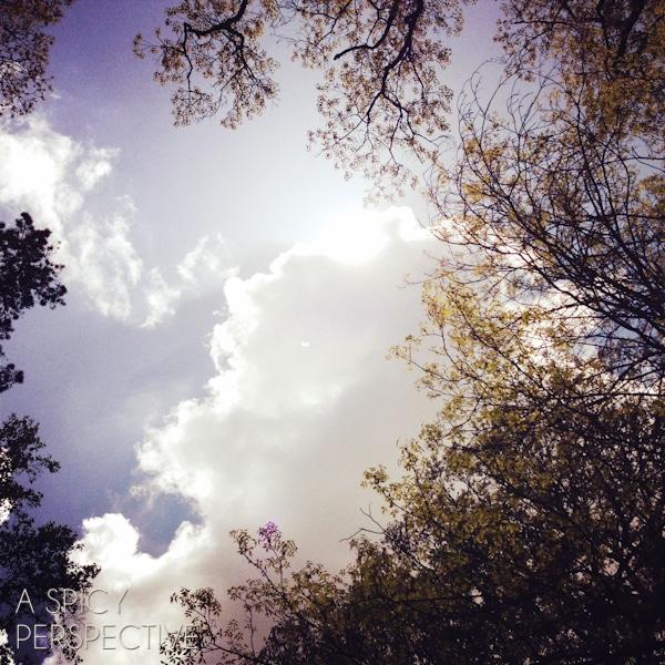 hopeful sky