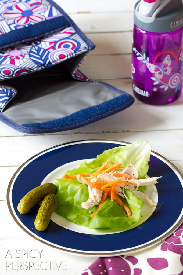 Back-to-School Lunch Ideas | ASpicyPerspective.com #backtoschool #lunch #schoollunch #lunchbox