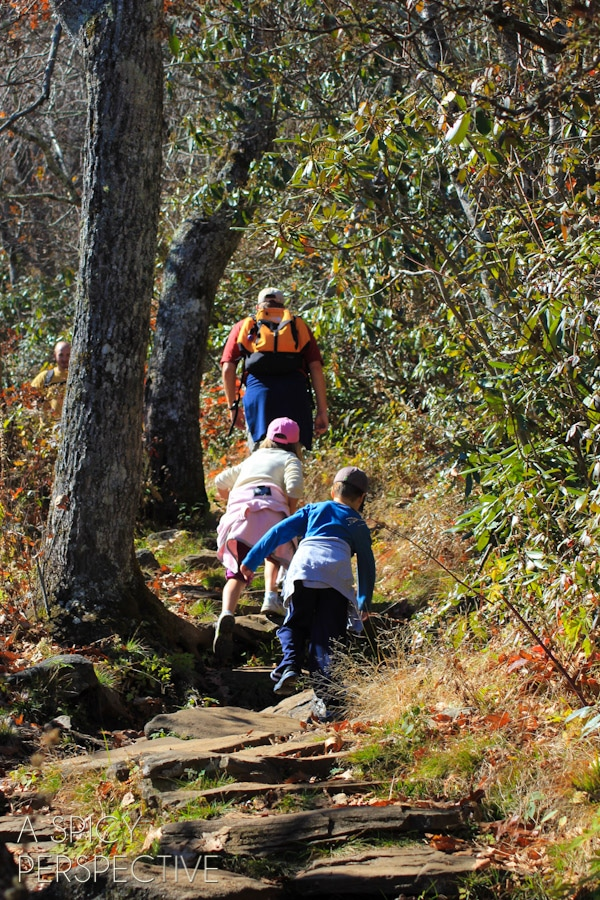 Hiking -Things to Do in Asheville NC   ASpicyPerspective.com #travel #asheville #visitasheville #fall