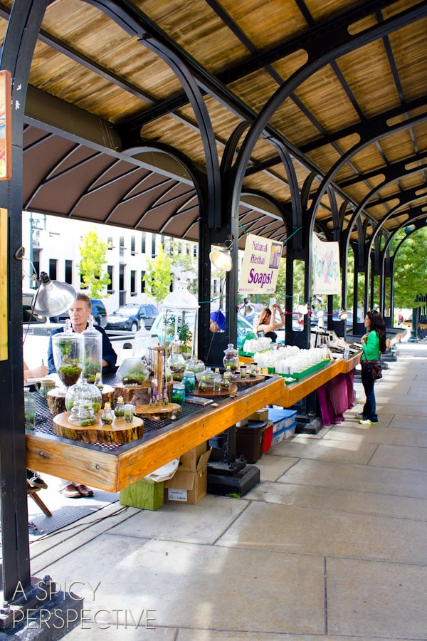 to Do in Asheville NC | ASpicyPerspective.com #travel #asheville