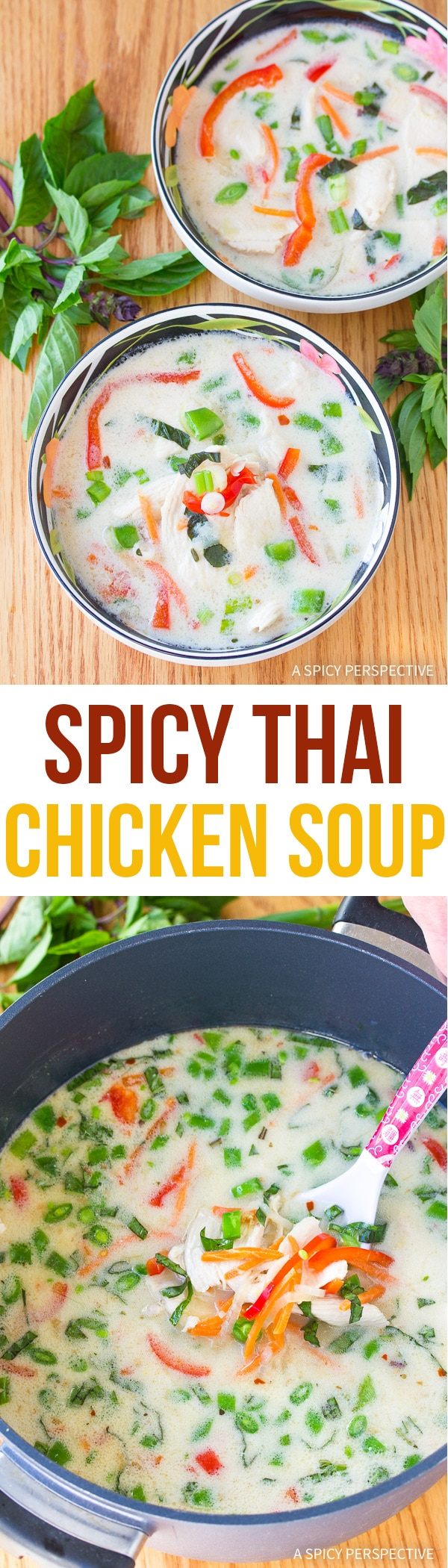 Healthy Spicy Thai Chicken Soup Recipe