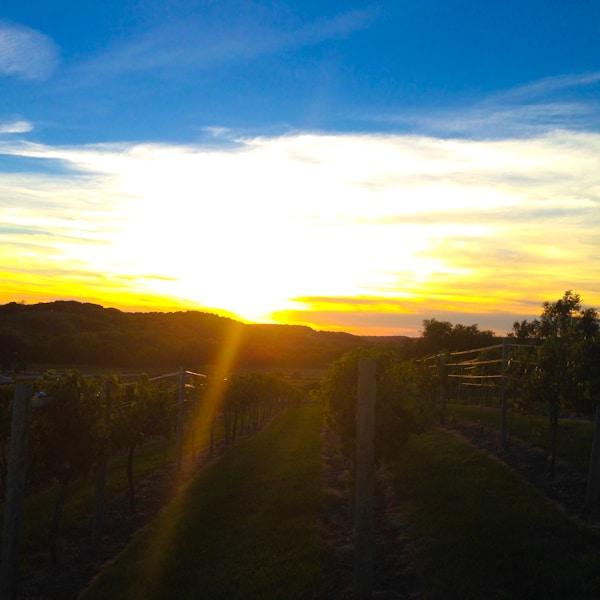 Iowa Sunset 2