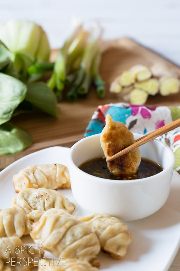 Traditional Potstickers - Chinese Dumplings #potstickers #dumplings #chinese #appetizer #dimsum