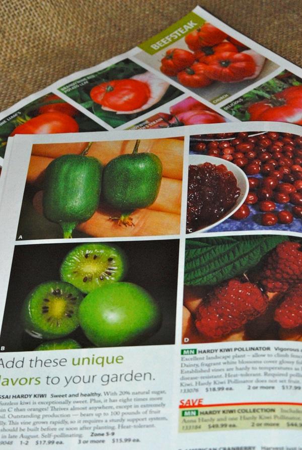 Free Printable Gardening Journal #gardening #printable