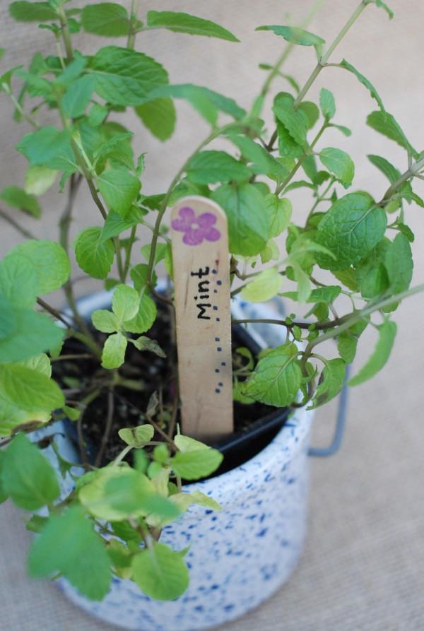Easy #DIY Garden Marker Tags #garden #gardening #seedlings #craft