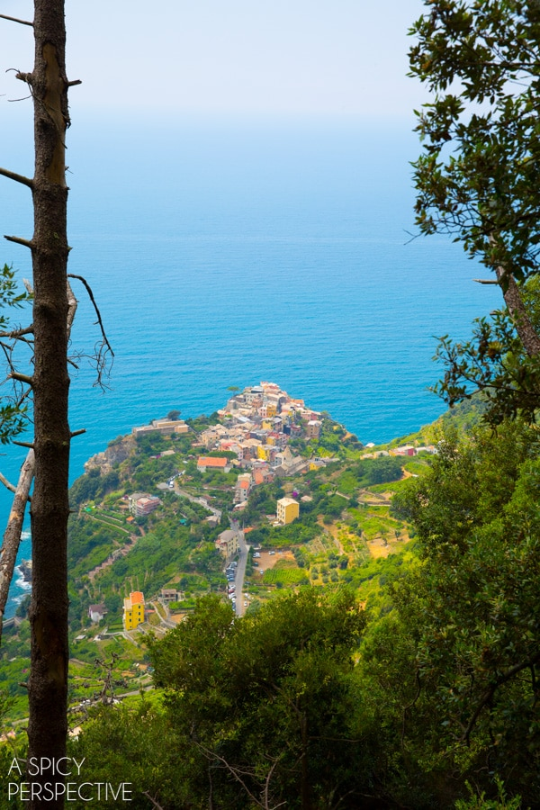 Hike the Cinque Terre, Italy #travel #italy #cinqueterre