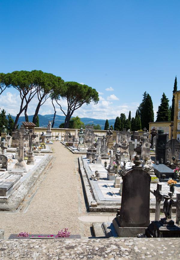 San Miniato - Florence, Italy #italy #travel