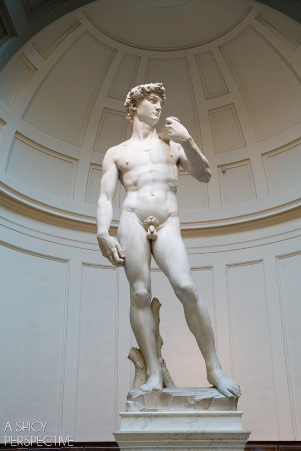 Michelangelo's David - Florence, Italy #italy #travel