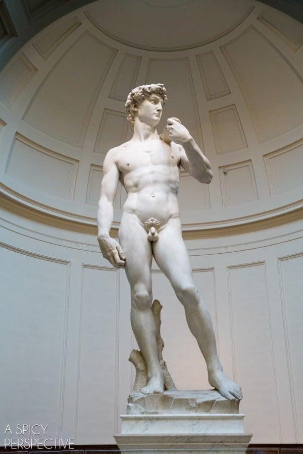 Mikelandželo Dovydas - Florencija, Italija #italy #travel