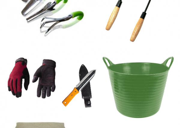 Garden Tools for Harvesting on ASpicyPerspective.com #garden #gardening #fall