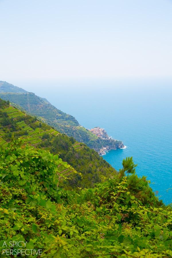 Hiking the Cinque Terre, Italy #travel #italy #cinqueterre