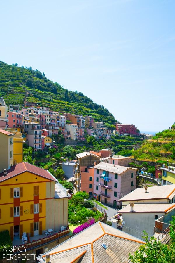 Cinque Terre, Italy #travel #italy #cinqueterre