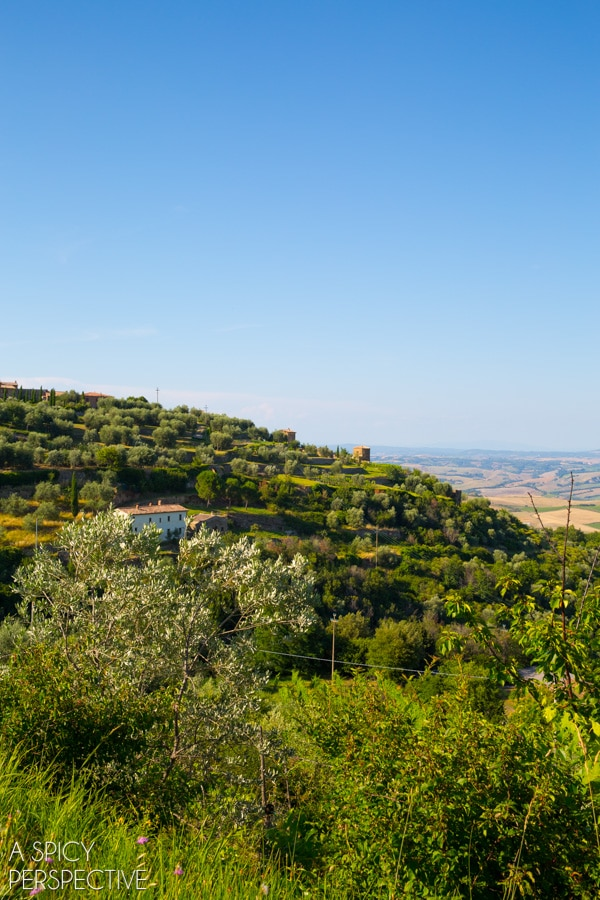 Tuscany: The Hill Towns on ASpicyPerspective.com #travel #italy #traveltuesday #tuscany