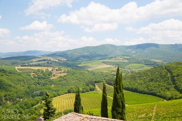 Chianti Vineyards - Tuscany Italy #travel #italy #tuscany #traveltuesday