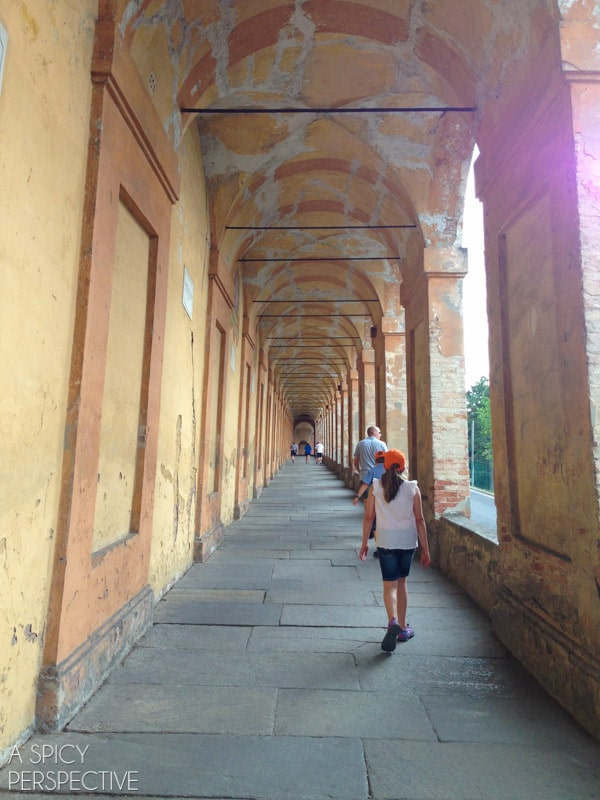 San Luca - Bologna Italy - Travel Tips and Photos on ASpicyPerspective.com #travel #italy