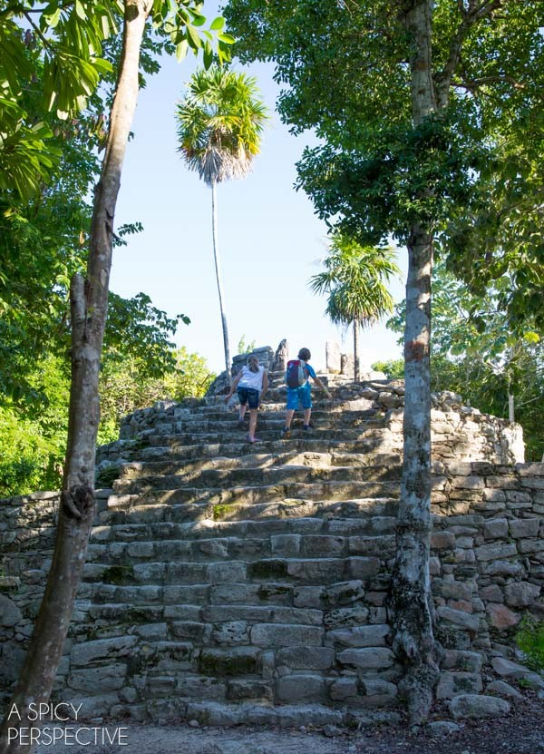 Mayan Ruins - Things To Do In Playa Del Carmen Mexico #travel #mexico
