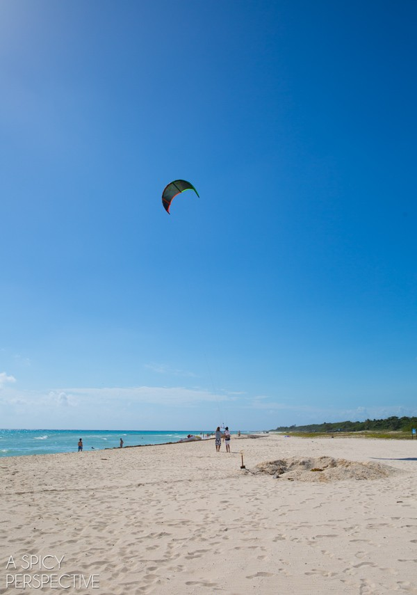 Kite - Things To Do In Playa Del Carmen Mexico #travel #mexico