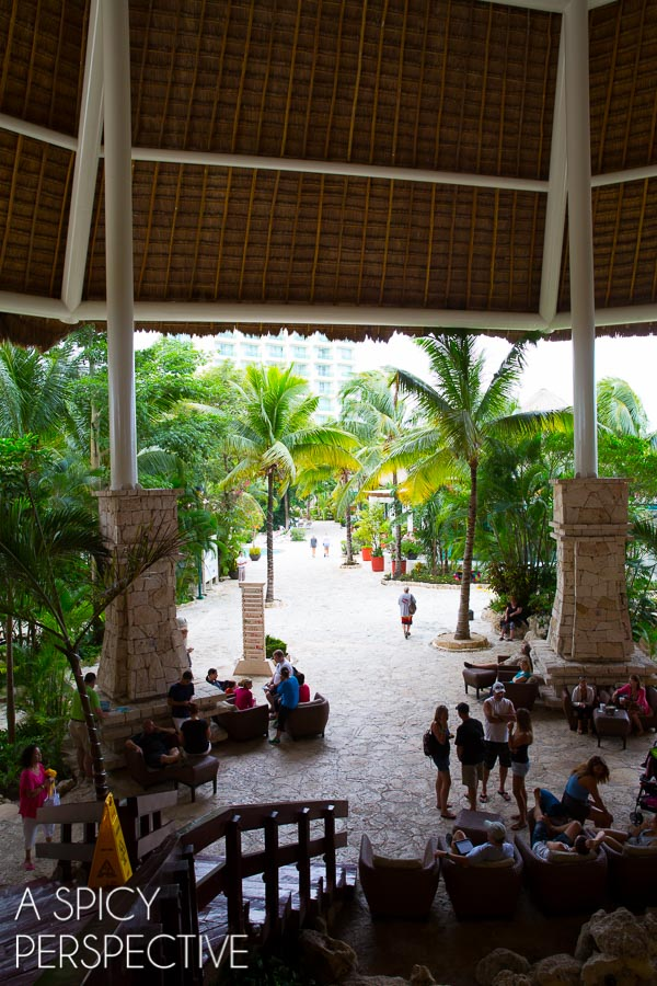 Shop - Things to do in Cozumel, Mexico! #Travel #Mexico