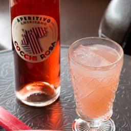 The Rhubarb Sparkler Cocktail on ASpicyPerspective.com #summer #cocktails