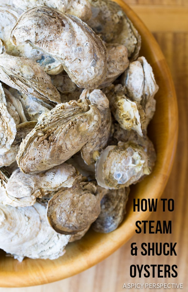 How to Shuck Oysters (And Steam Oysters, and throw an Oyster Shucking Party, and...) on ASpicyPerspective.com #oysters #howto