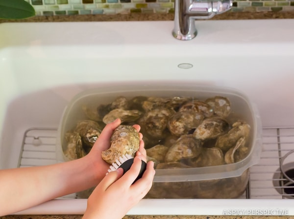 How to Clean Oysters (And Steam Oysters, and throw an Oyster Shucking Party, and...) on ASpicyPerspective.com #oysters #howto