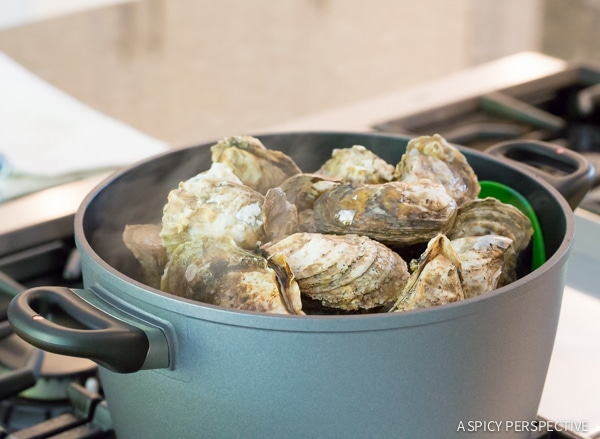 How to Steam and Shuck Oysters (And Clean Oysters, and throw an Oyster Shucking Party, and...) on ASpicyPerspective.com #oysters #howto
