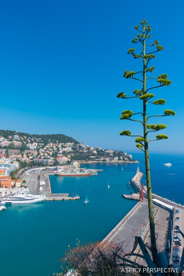 Nice, France - Travel Tips and Photography on ASpicyPerspective.com