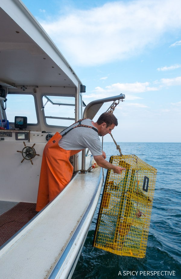 Lobstering - Lucky Catch Cruises in Portland, Maine Coast Crawl on ASpicyPerspective.com #travel