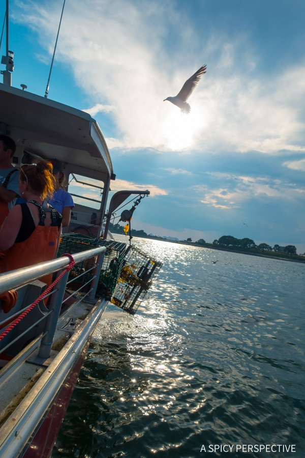 Lobstering in Portland, Maine Coast Crawl on ASpicyPerspective.com #travel