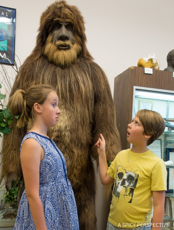 Cryptozoology Museum in Portland, Maine Coast Crawl on ASpicyPerspective.com #travel