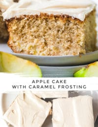 Best Apple Cake with Salted Caramel Frosting on #ASpicyPerspective #apple #cake #caramel #frosting #caramelapple #sheetcake
