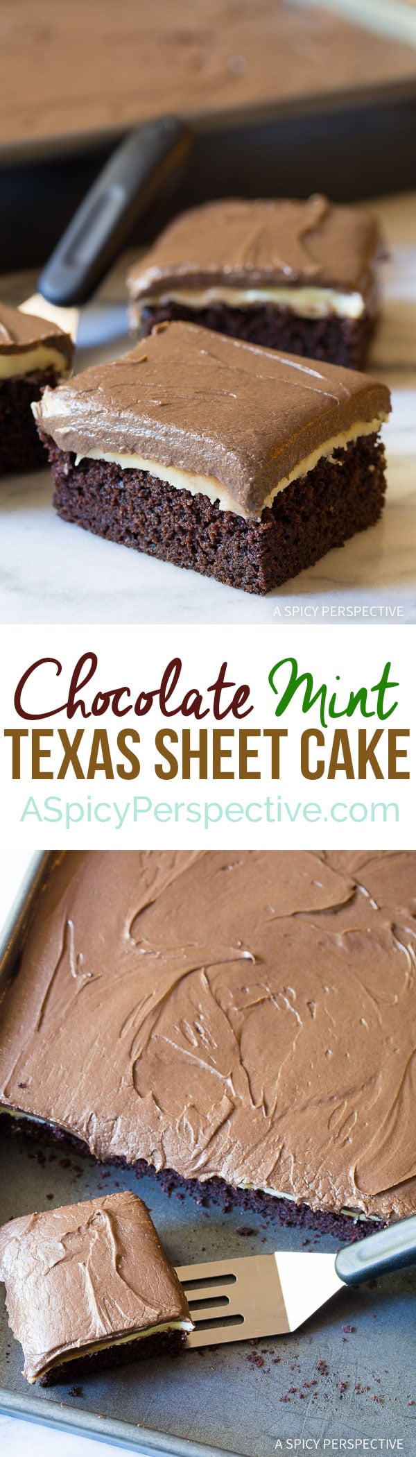 Try this Yummazing Chocolate Mint Texas Sheet Cake on ASpicyPerspective.com