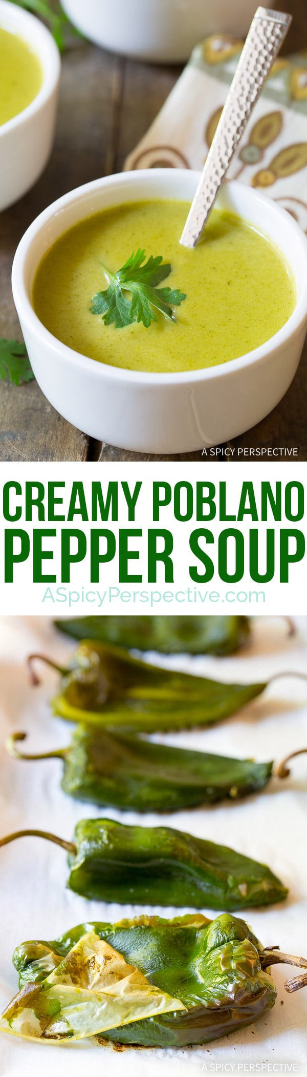 Mild and Smoky - Creamy Poblano Pepper Soup Recipe on ASpicyPerspective.com