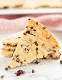 Cranberry Chocolate Chip Shortbread Cookies Recipe #ASpicyPerspective #christmas #holidays