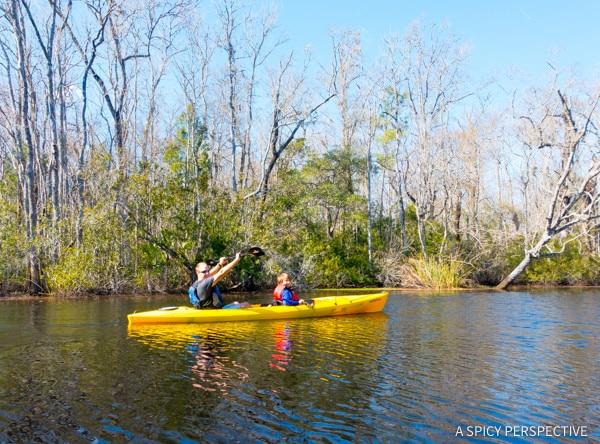 Kayaking - Visit Amelia Island, Florida   ASpicyPerspective.com
