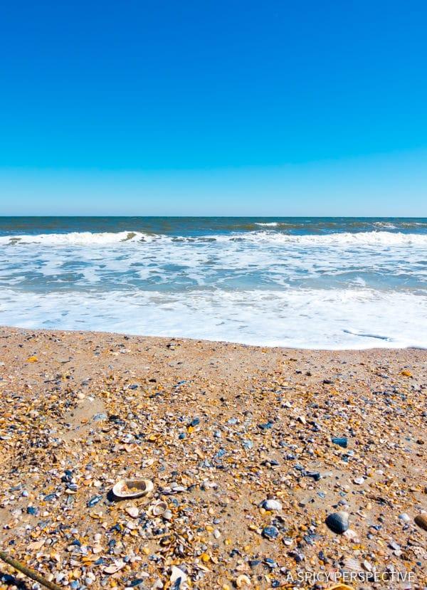 Visit Amelia Island, Florida | ASpicyPerspective.com