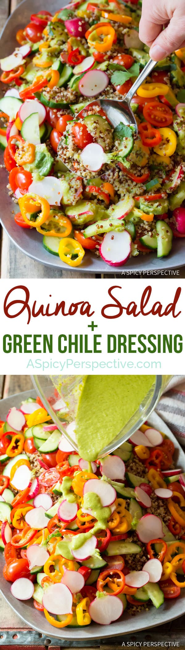 Hearty Quinoa Salad Recipe with Green Chile Dressing (Vegan & Gluten Free!) | ASpicyPerspective.com