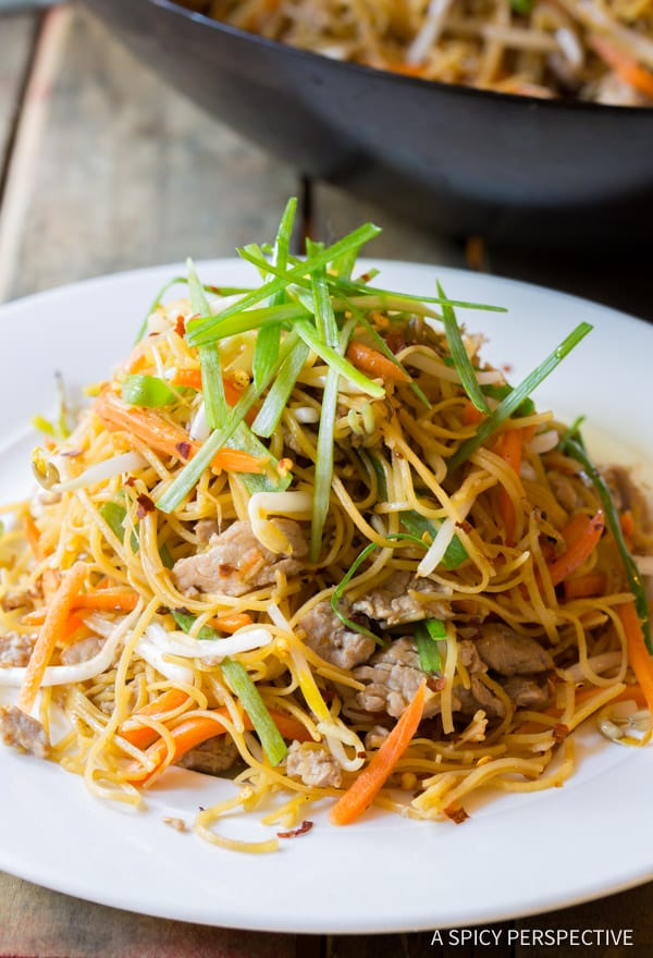 Cantonese Pan Fried Noodles (Pork Lo Mein) - A Spicy Perspective