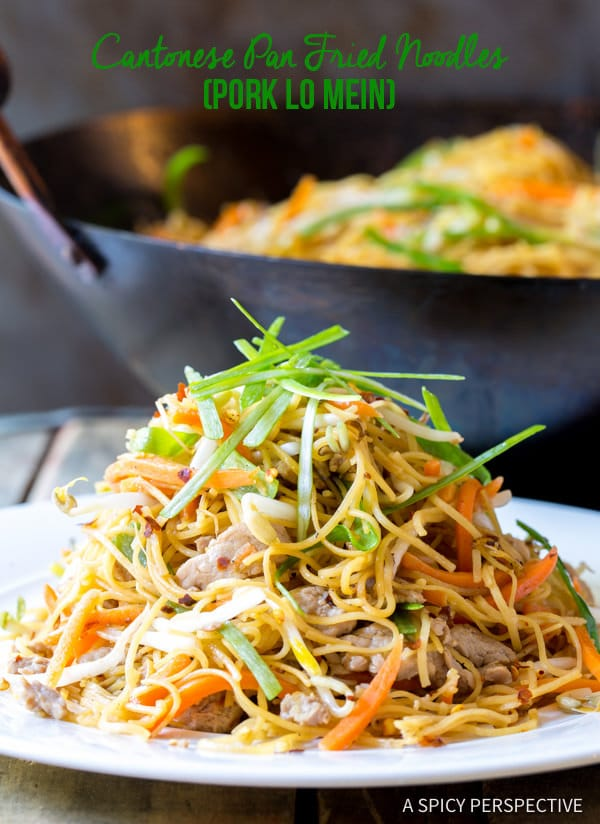 Savory Cantonese Pan Fried Noodles (Pork Lo Mein) | ASpicyPerspective.com