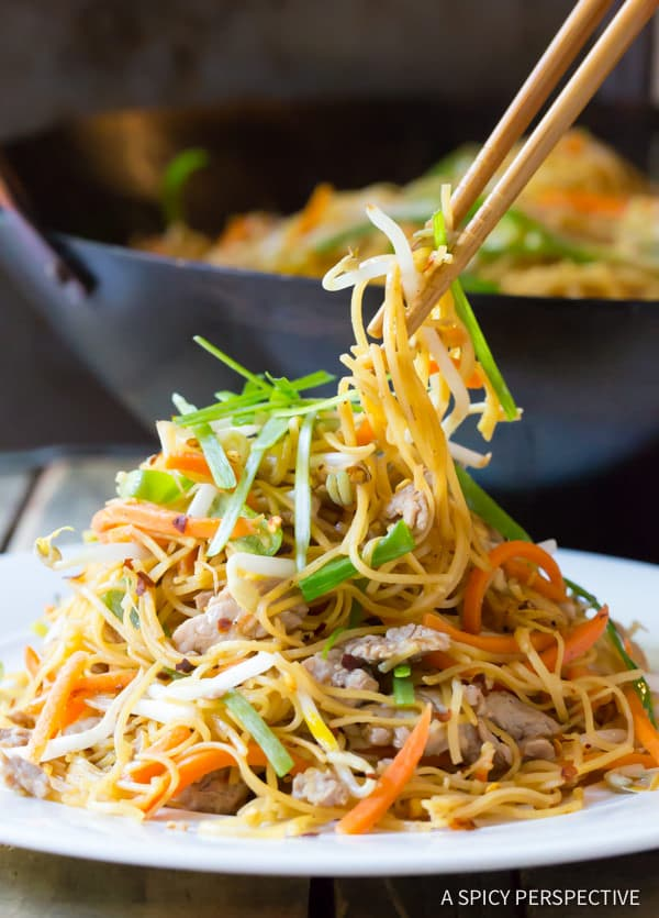 QX. Cantonese Pan Fried Noodles (Pork Lo Mein) - A Spicy Perspective