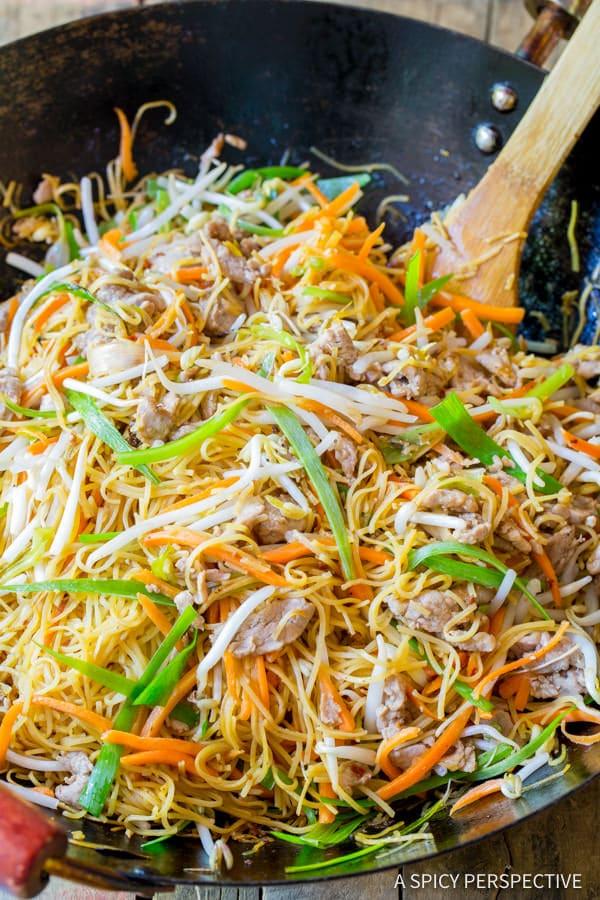 The Best Cantonese Pan Fried Noodles (Pork Lo Mein) | ASpicyPerspective.com