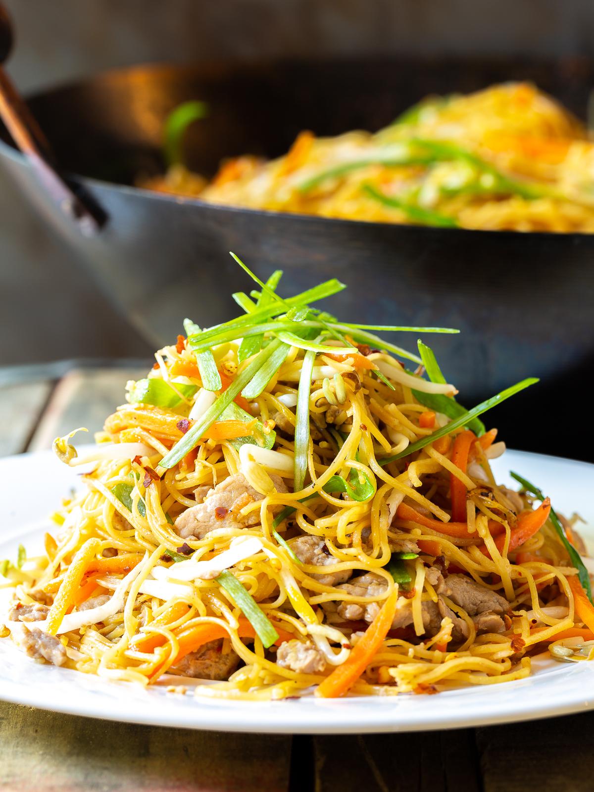Cantonese Pan Fried Noodles (Pork Lo Mein)